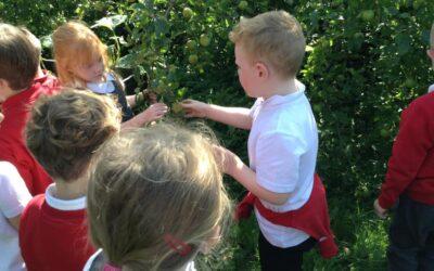 School Children Supply Meals to Locals